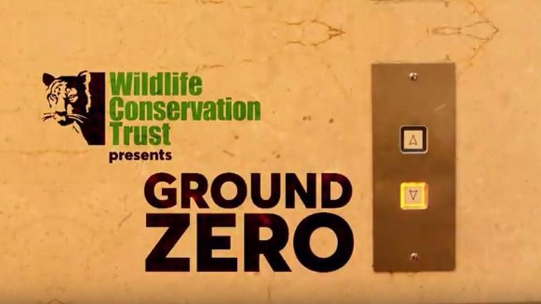 This World Environment  Day, Let's Talk About Wildlife Too