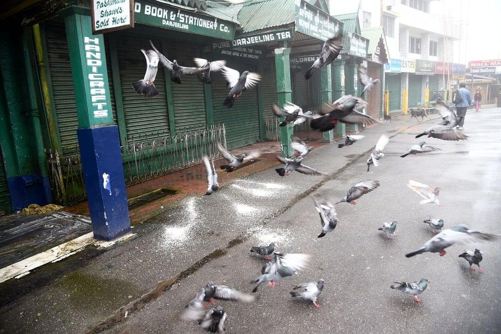 Empty streets in Darjeeling.