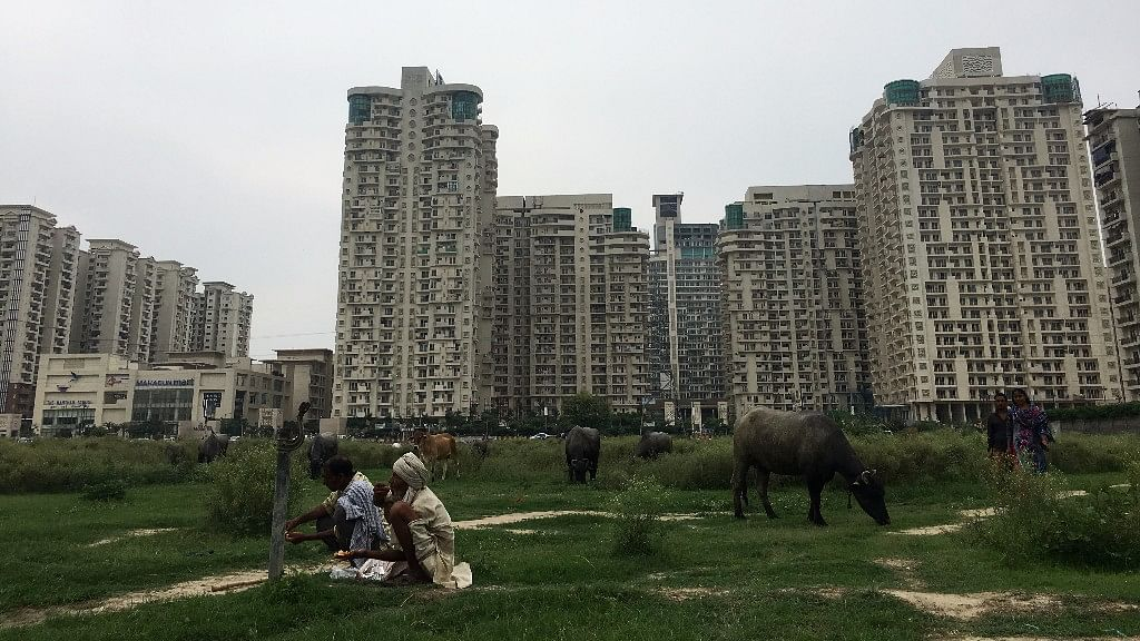 Mahagun Moderne is built on the intersection of two worlds; concrete towers surrounded by bulls grazing in lush, green fields.