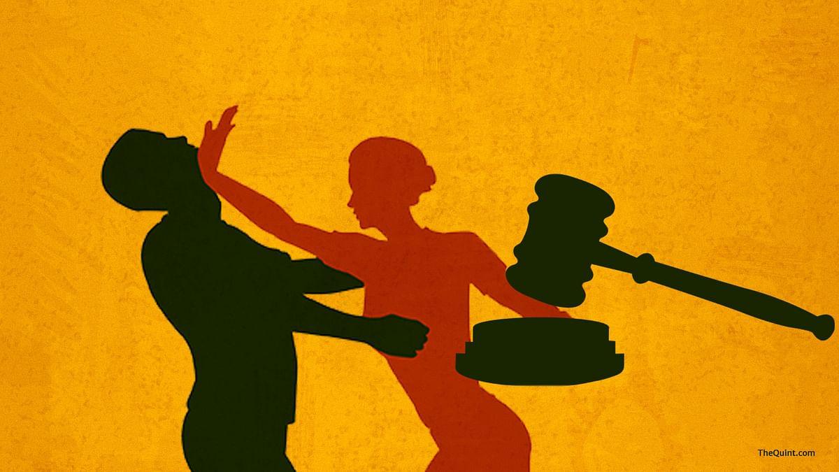 If Delhi HC criminalizes martial rape, this B'luru housewife may walk free