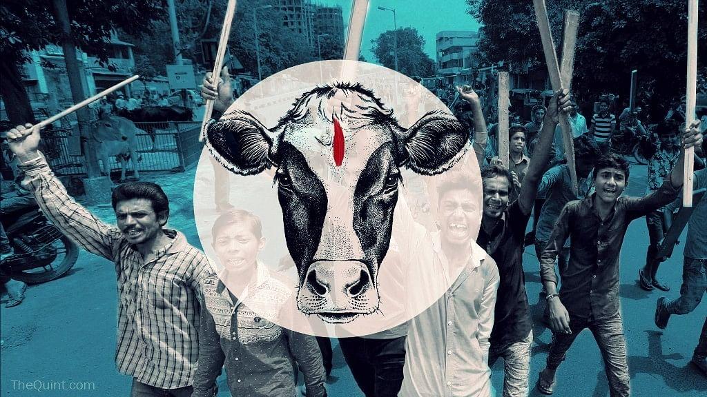 Mob Allegedly Attacks Gau Rakshaks in Maharashtra's Ahmednagar