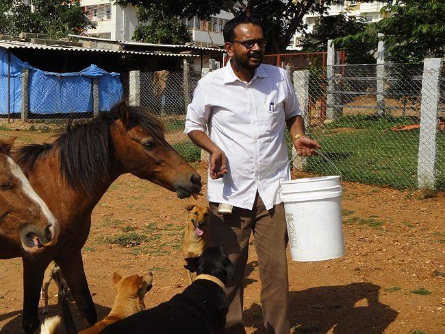 Bengaluru Man Devoted Years to Save City's Abandoned Horses