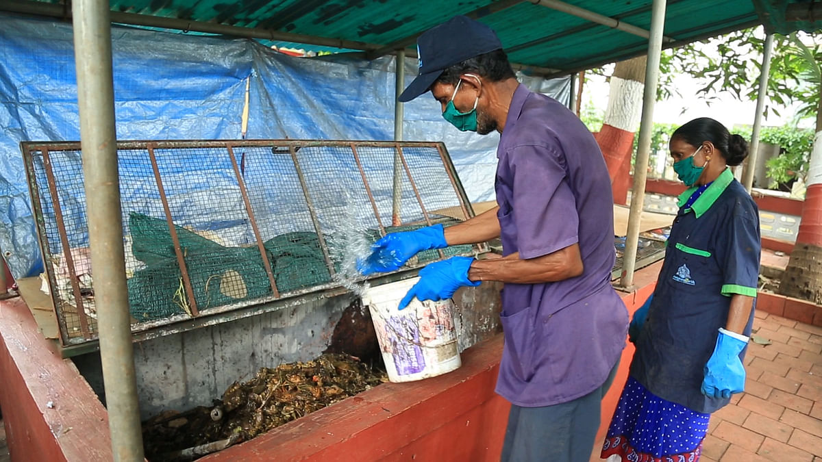 Workers from Sampoorn(e)arth treat a compost pit.