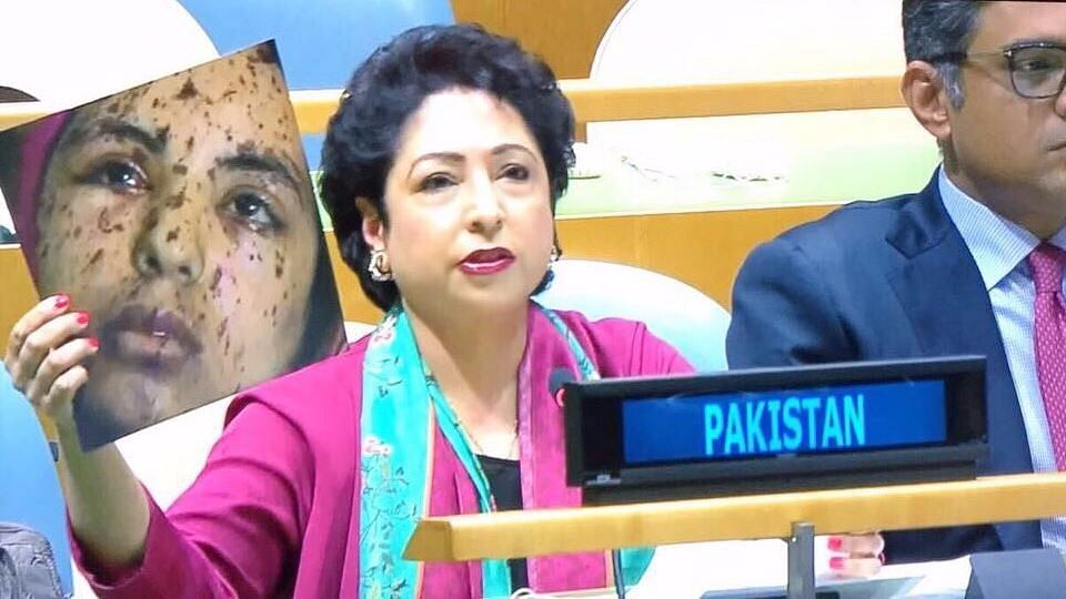 Terming it 'the face of India', Lodhi waved about the photo of a young girl whose face was riddled with injuries.