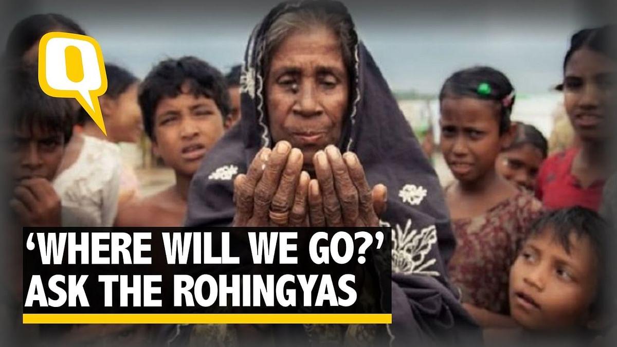 """Trust us, we aren't here for terror,"" plead Rohingya refugees."