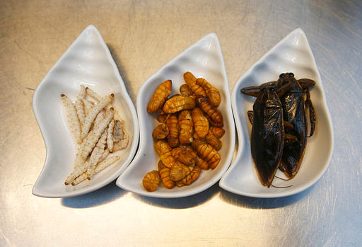 From left to right – bamboo worms, silkworms and giant water beetles are some of the ingredients used at Insects in the Backyard restaurant, in Bangkok, Thailand.