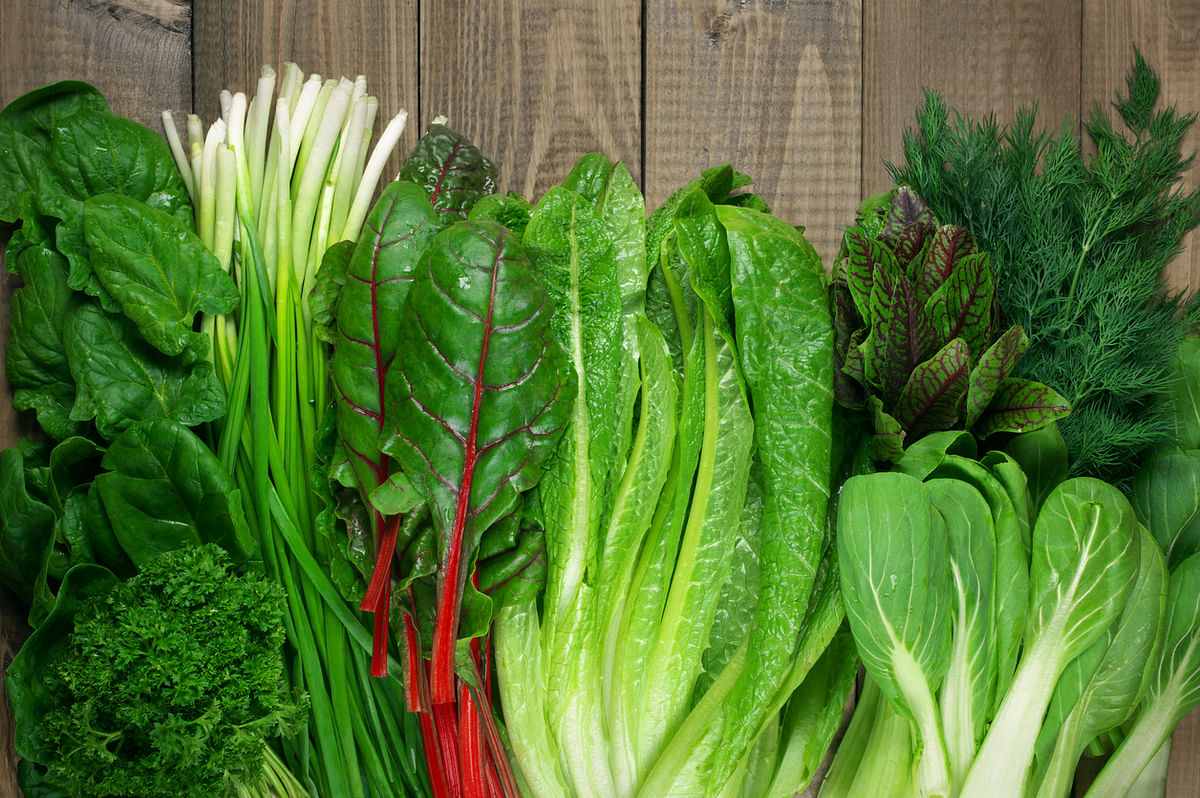 Green vegetables are a rich source of iron.