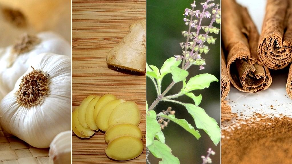 Seven Magical Herbs To Boost Your Immunity This Winter