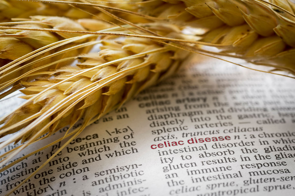 Gluten-Free Diet: Fancy Western Concept Or Indian Necessity?