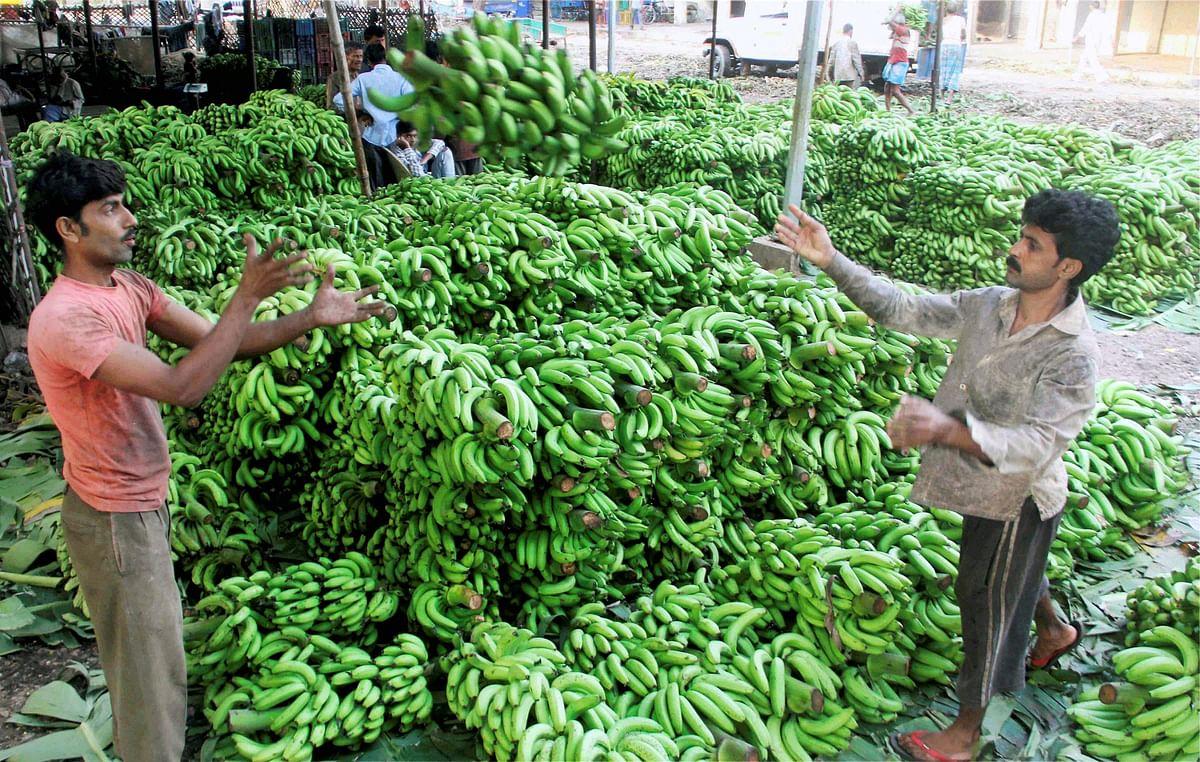 Vendors prepare for the day's festivities. <i>(Photo: IANS)</i>