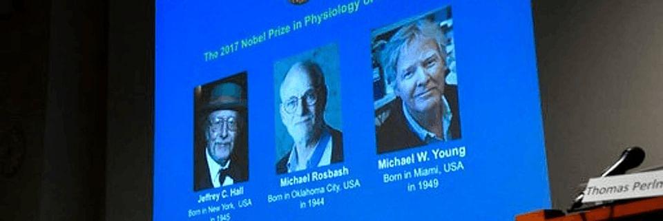 Nobel Laureates of Physiology or Medicine. (Photo: AP)
