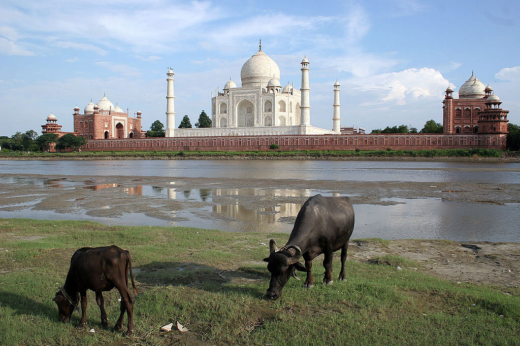 "Taj Mahal reflects in the Yamuna river. (Photo Courtesy: <a href=""https://upload.wikimedia.org/wikipedia/commons/thumb/1/15/Taj_Mahal-10.jpg/1024px-Taj_Mahal-10.jpg"">Wikimedia</a>)"