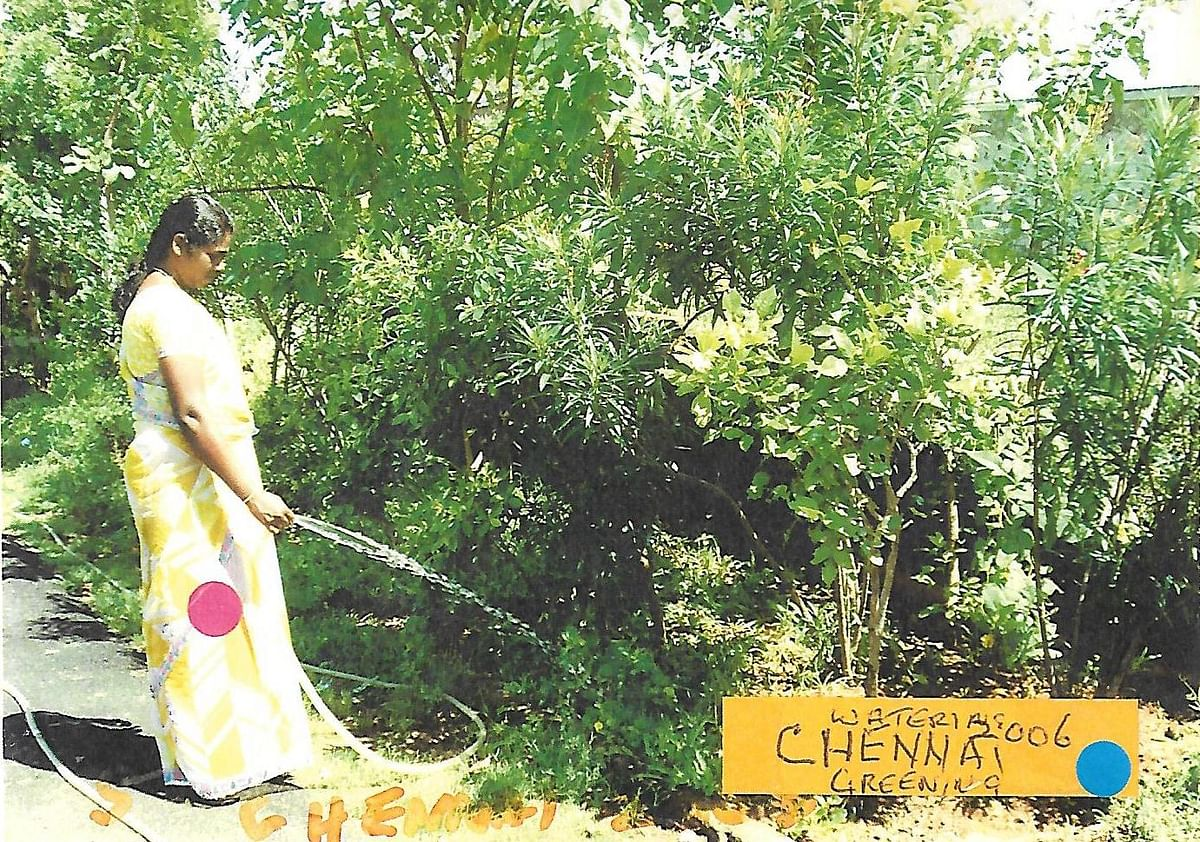 Around 300 trees get watered through waste water from Ramalingam's house.