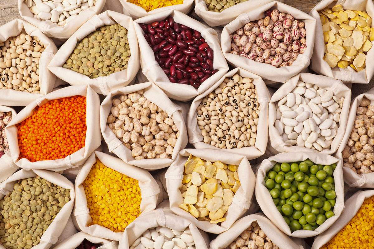 Legumes come in various shapes and sizes and are a rich source of iron.