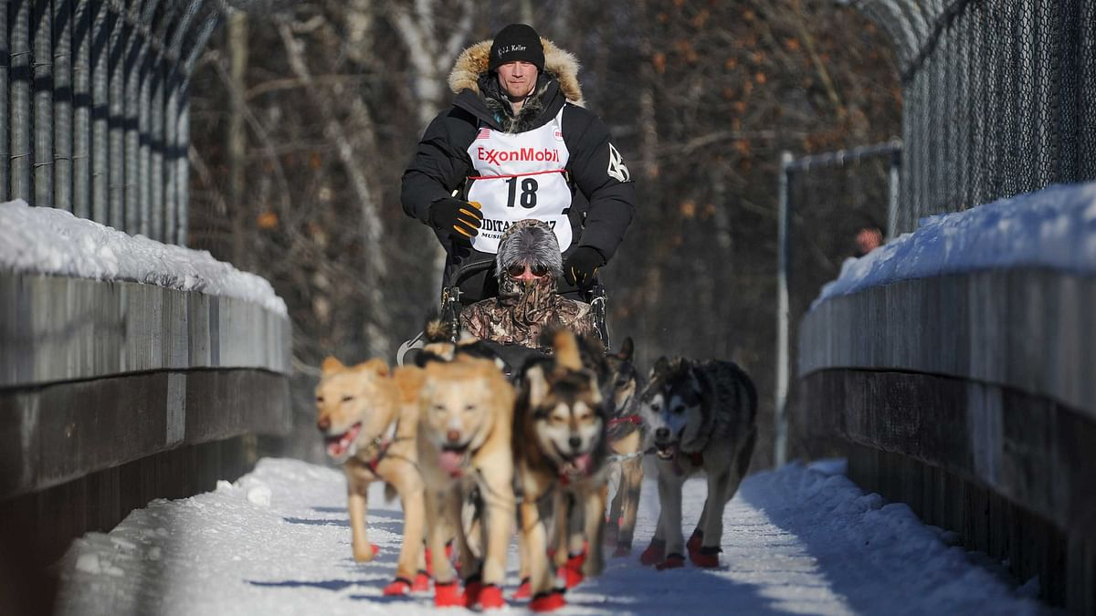 In this March 4, 2017, file photo, four-time and defending champion Dallas Seavey mushes during the ceremonial start of the Iditarod Trail Sled Dog Race in Anchorage, Alaska