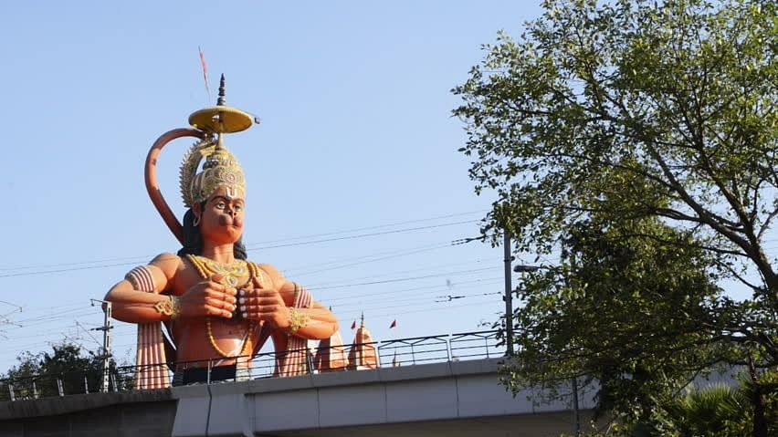 The Delhi High Court said it was unfortunate that a 108-foot Hanuman statue was allowed to be raised on public land's pavement in the city.