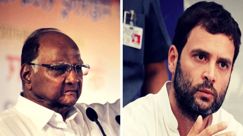 NCP Chief Sharad Pawar and Congress Vice President Rahul Gandhi