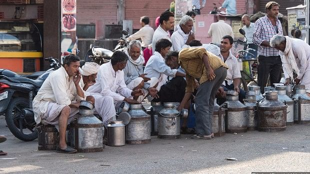 Small dairy farmers at a milk market in Jaipur.