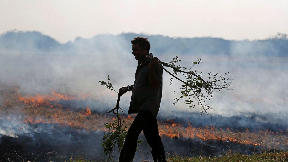 As Delhi Struggles With Smog, Kashmir Bans Burning of Leaves