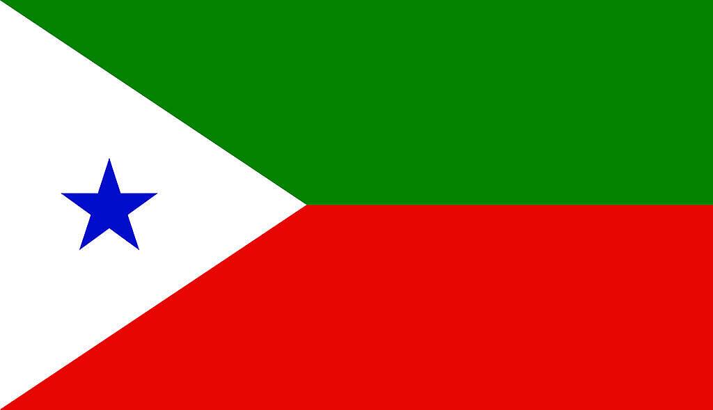Flag of PFI.