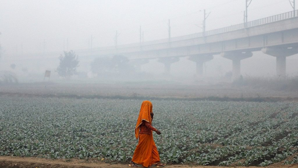 Reverse Migration? Polluted Cities Force Citizens into Rural Life