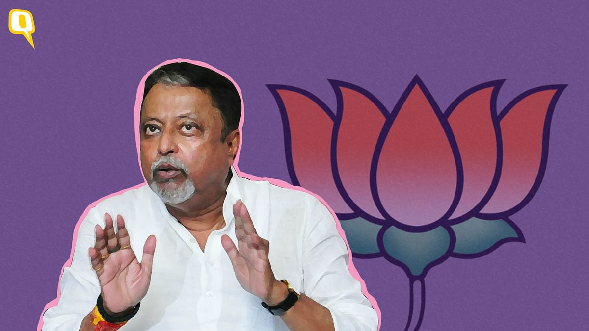 107 Bengal MLAs Will Leave TMC, Cong & Left to Join BJP: Mukul Roy