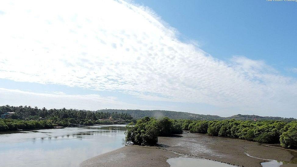 <p>Mahadayi river.&nbsp;</p>