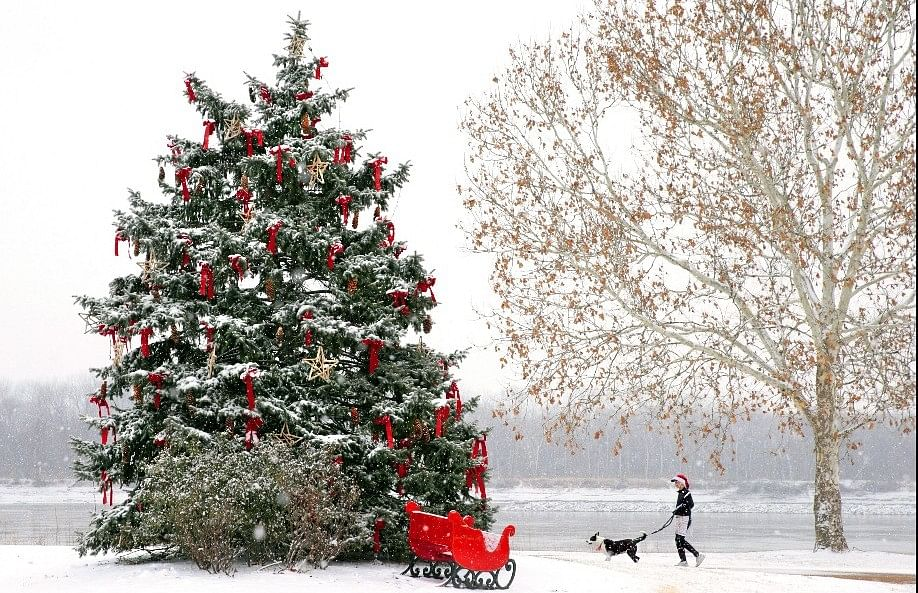 A huge Christmas tree in a snow clad landscape