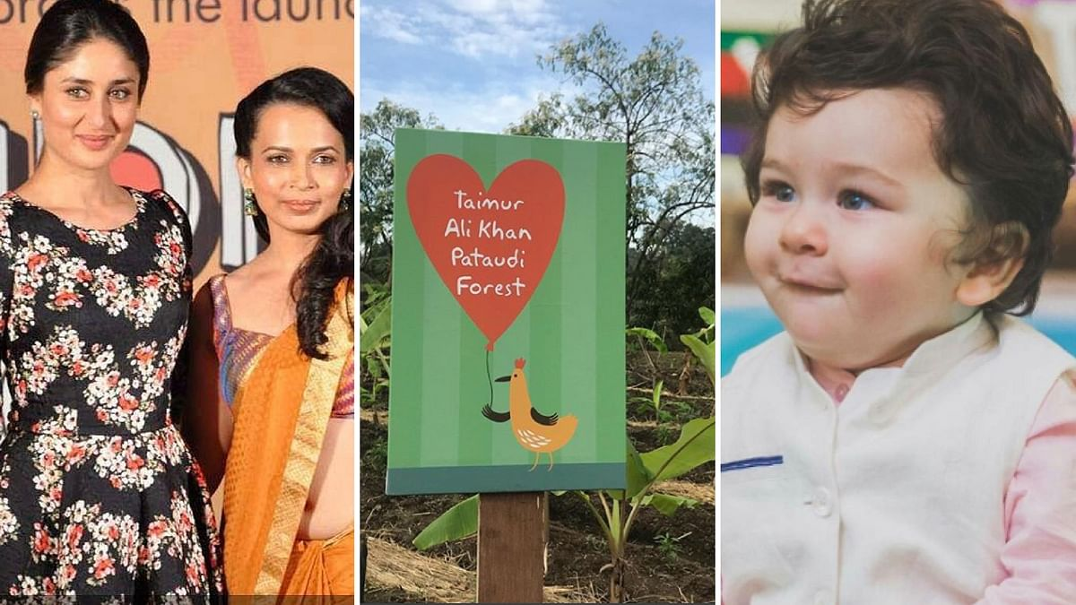 Kareena and her nutritionist gift baby Nawab a forest.