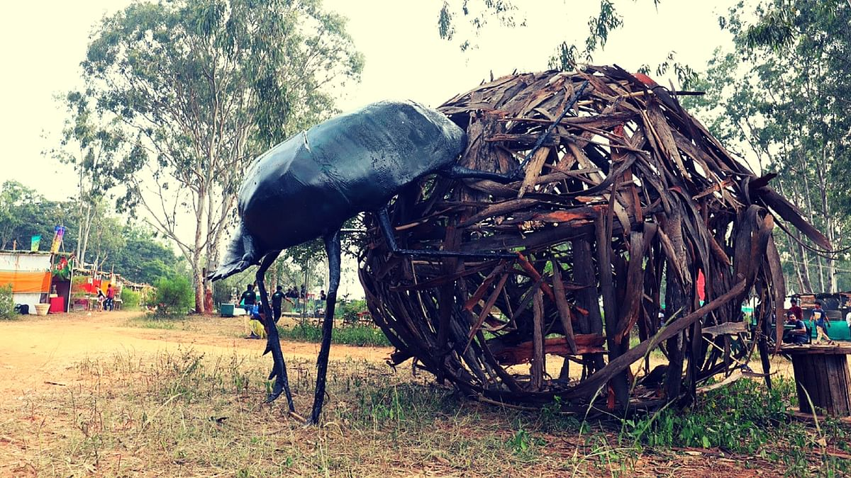 The theme of the festival, which just concluded its second edition, was 'Bugs of the Ecosystem'.