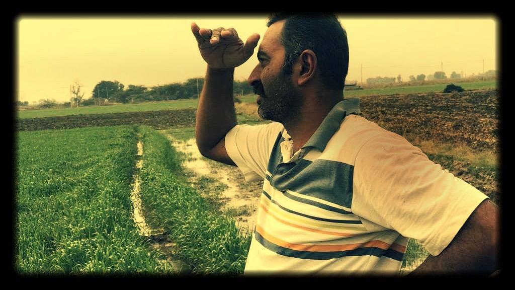 Cotton farmer Bipinbhai Phokia.