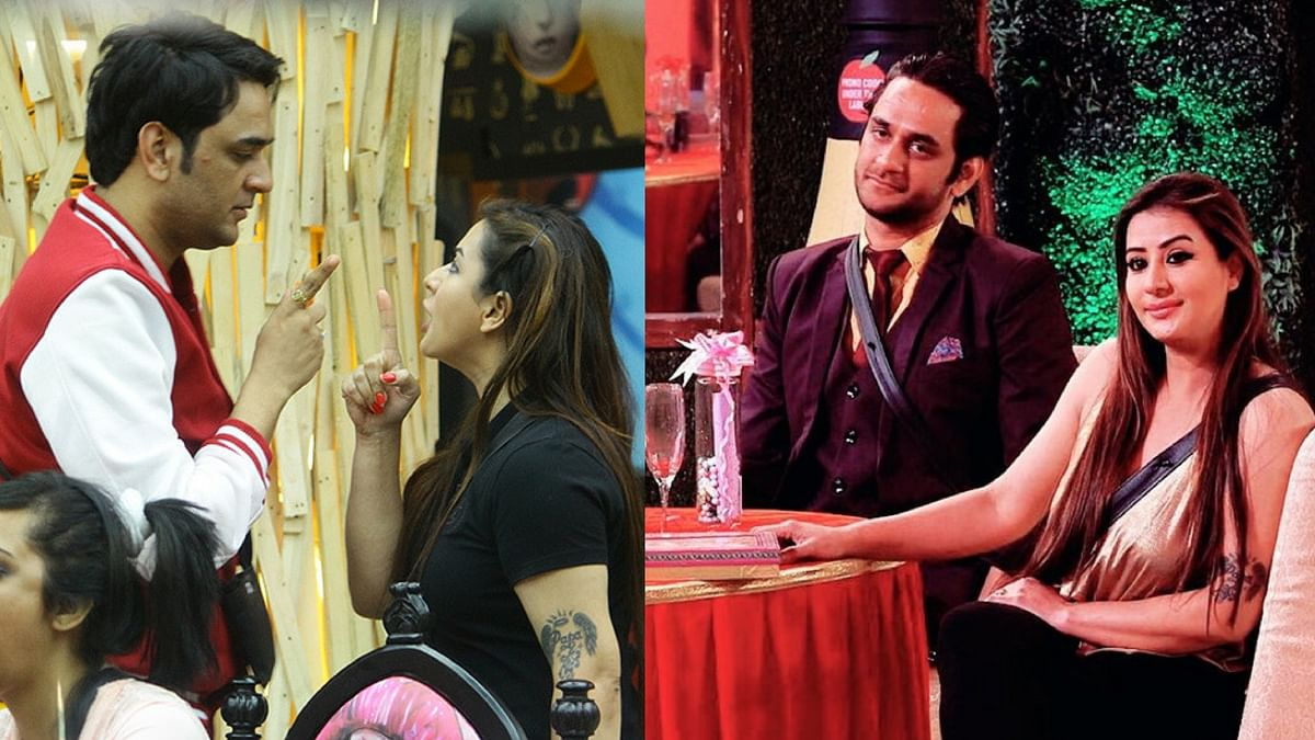 Shilpa and Vikas's journey in the <i>Bigg Boss 11</i> house.&nbsp;