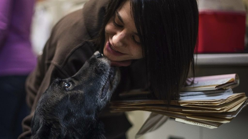 #GoodNews: Family's Dog Turns up 10 Yrs After it Had Gone Missing
