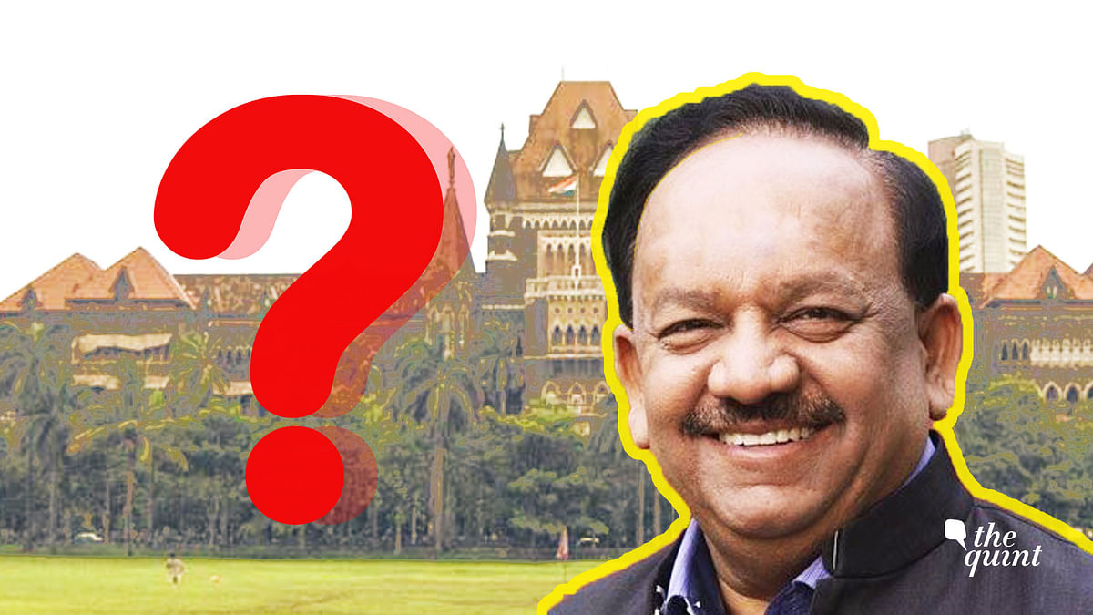 Goa Mining Scam: Bombay HC & Environment Min Have a Lot to Answer