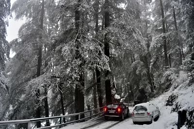 Shimla: Heavy snowfall wraps Shimla