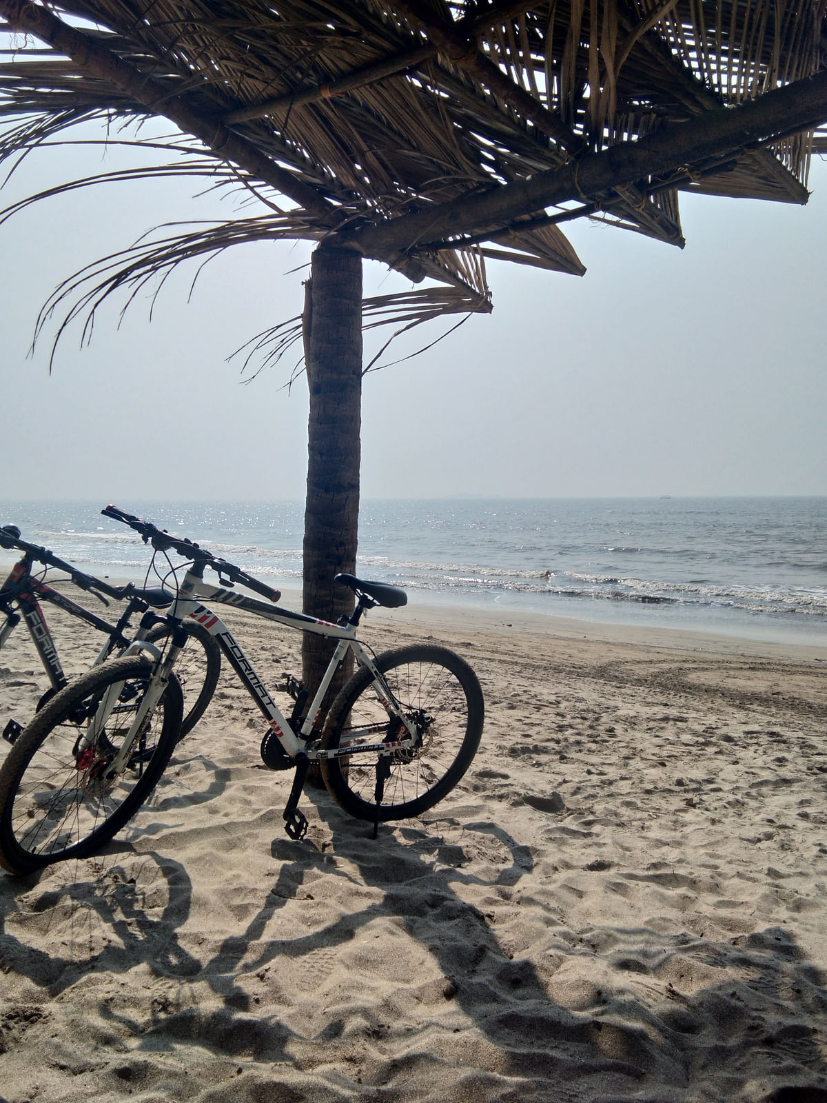 We cycled on, ticking off kilometre after kilometre – genuinely forgetting to keep track of how long we'd come.