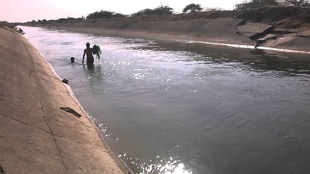Narmada Canal water is used both for drinking and irrigation.