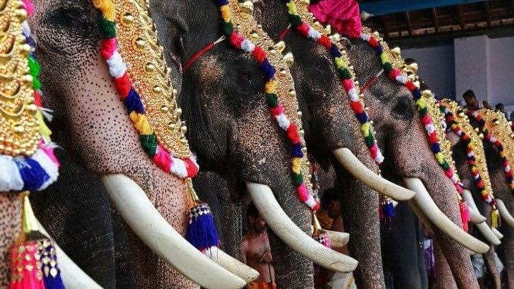 The temple in Cherthala decided that they would be replacing elephants with wooden structures or jeevathas to mount the deity.