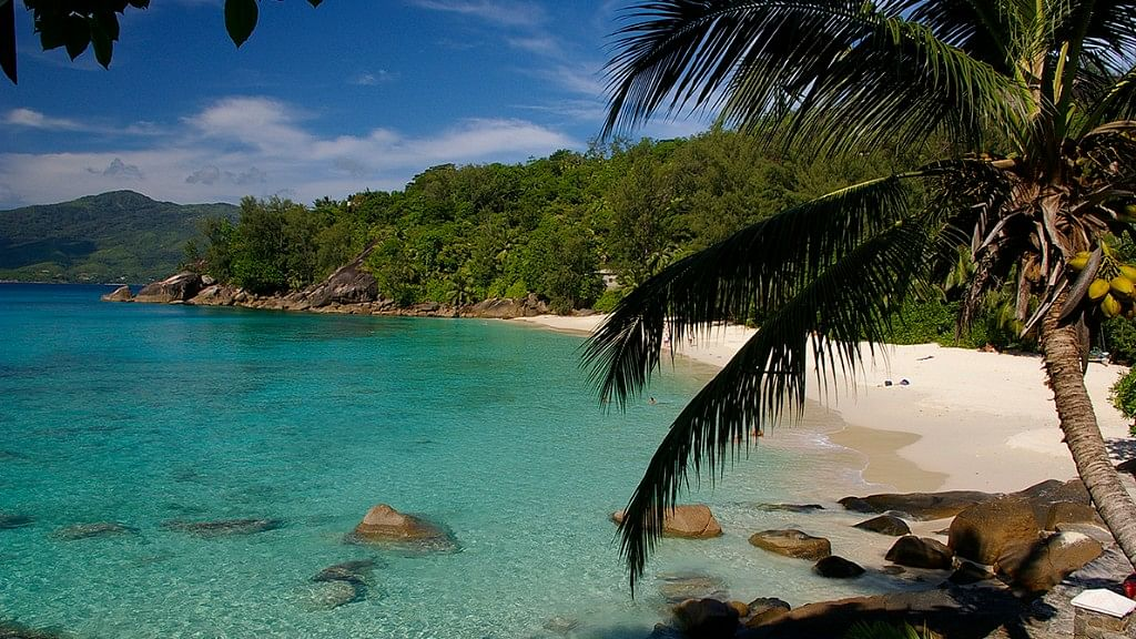 Seychelles promises to give you an unforgettable honeymoon!