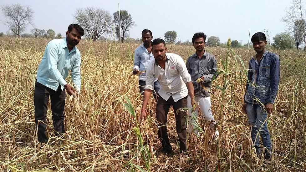 No Option But to Commit Suicide, Say Maha Farmers After Hailstorms