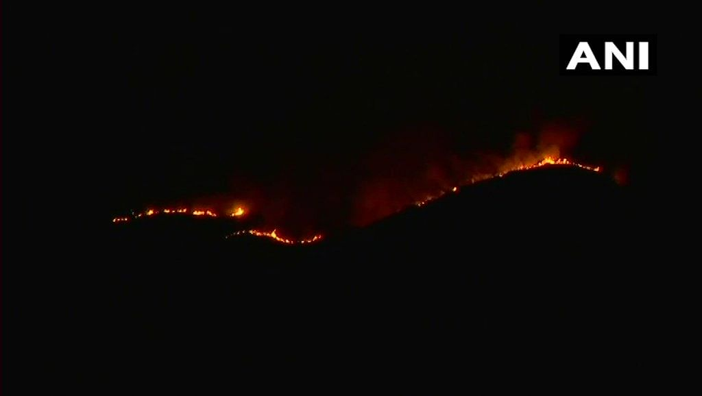 Visuals of the forest fire that broke out in Tamil Nadu.