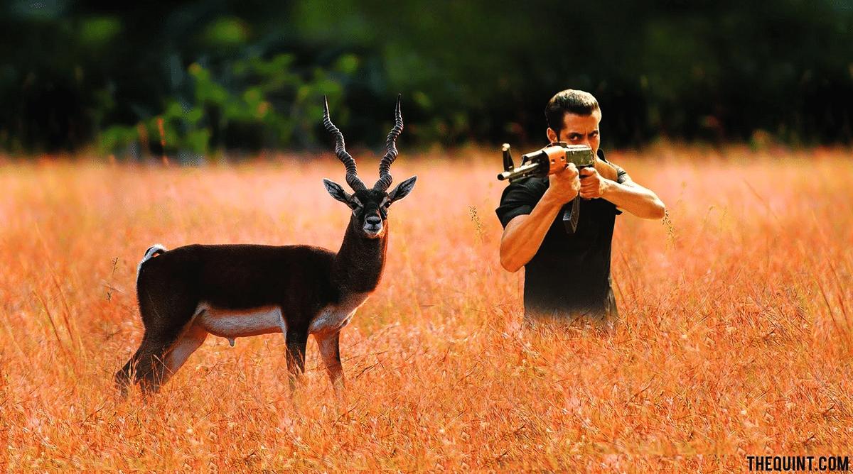 Salman Khan found guilty of blackbuck poaching.