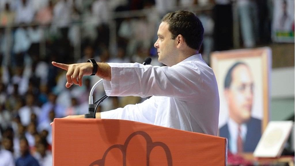 Will Stand With Dalits: Rahul at 'Save the Constitution' Event