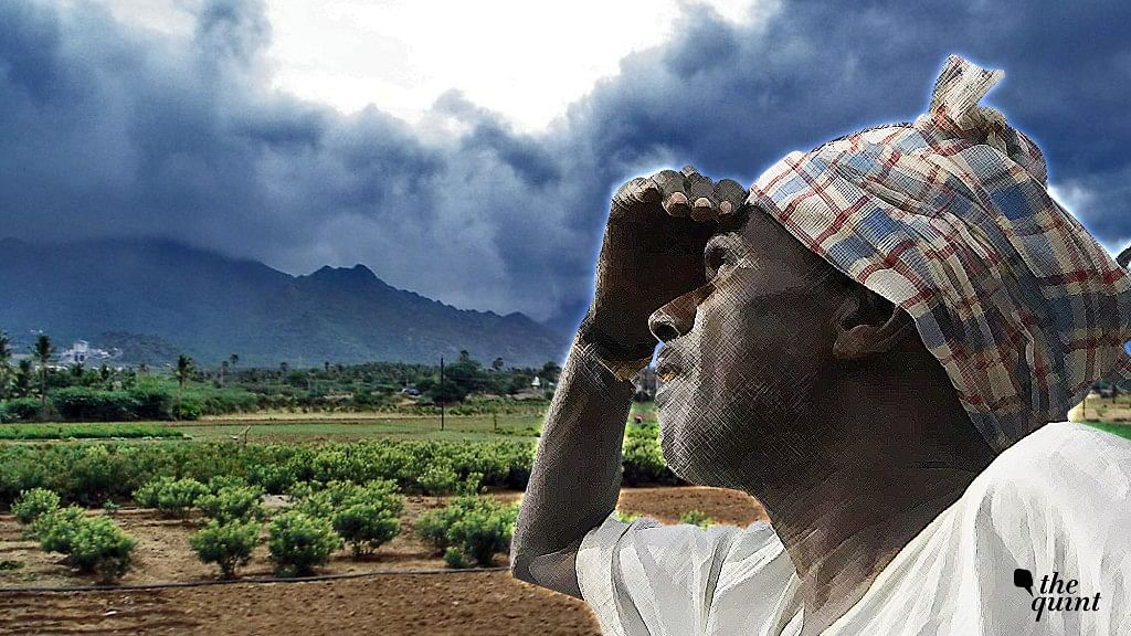 Good Monsoon = Better Income for Farmers? Not Quite