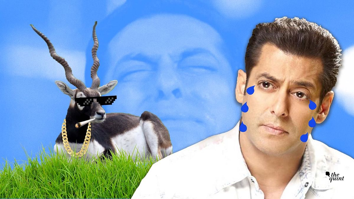 'Dabangg for the Buck': The Salman Khan Rap Song