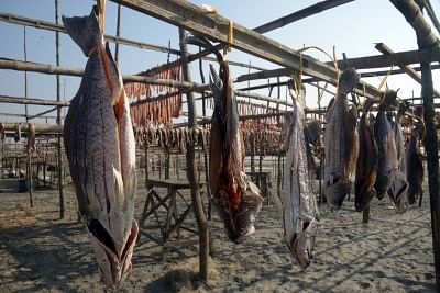 Fishermen said they had received calls from customers asking if fish at Kasimedu was safe to consume.