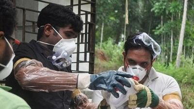 The blood and serum samples of 21 bats tested at the National Institute of High Security Animal Diseases in Bhopal returned negative results for the virus.