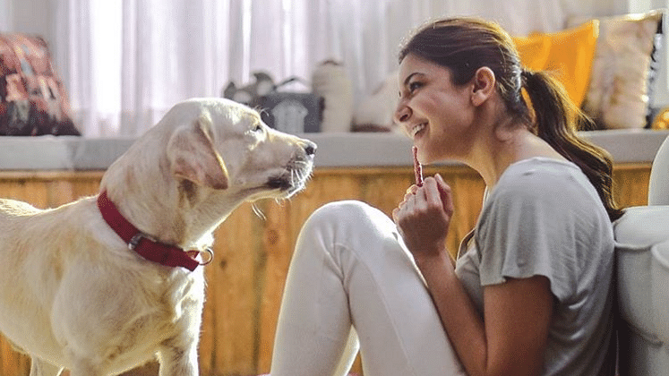 Anushka Sharma with her pet, Dude.