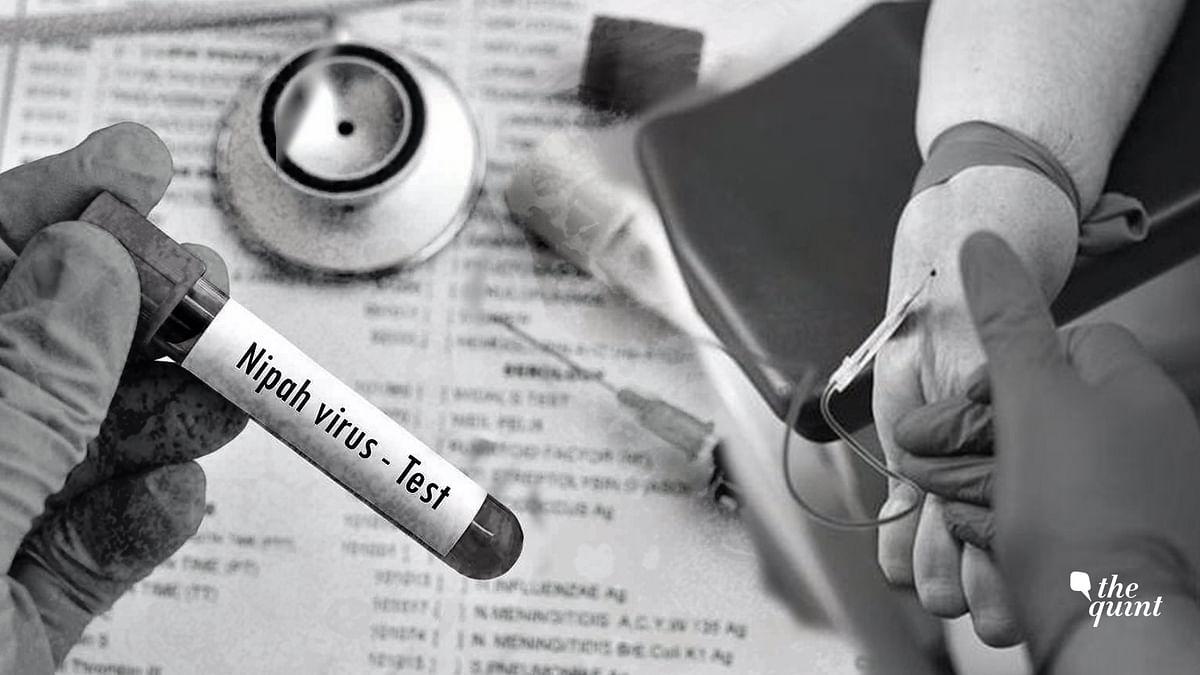 Nipah Virus: Kerala CM Promises Medical Reimbursements