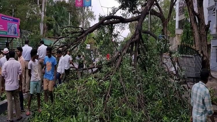 Unseasonal rains provide relief but also wreak havoc uprooting several trees and electric poles.